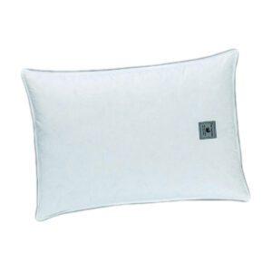ζεύγος-μαξιλάρια-ύπνου-φτερό-guy-laroche-siberian-goose